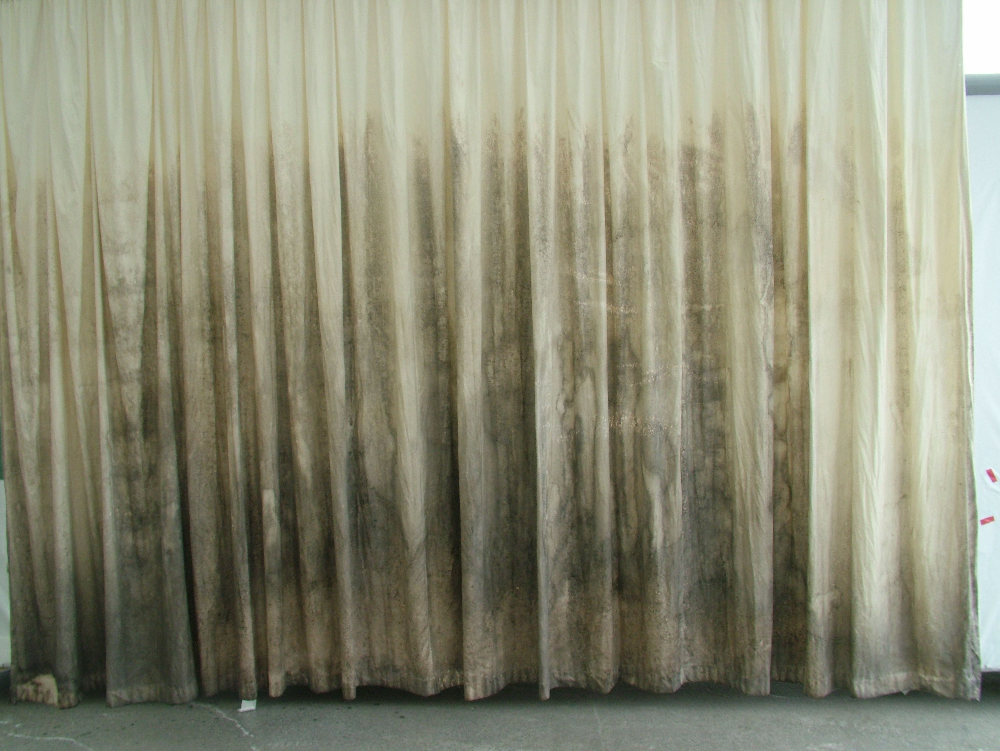 Curtain Clean Agent In Rotorua Chemdry Located View Rd